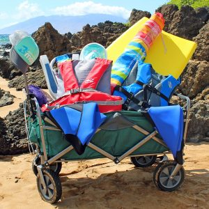 kihei beach wagon rental