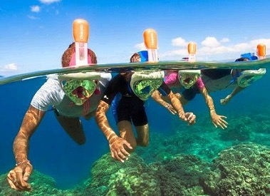four people with full face snorkel gear underwater