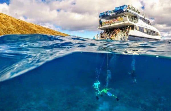 maui-snorkel-tour