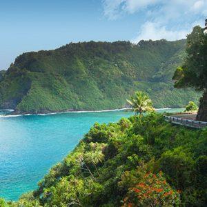 aloha-hana-van-tour-4