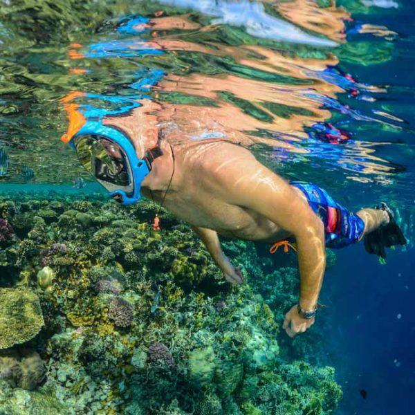 enjoying reef in full face snorkel gear
