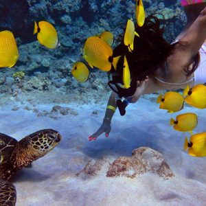 calypso-molokini-snorkel-tour-7