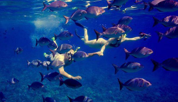 calypso-snorkel-tour-8