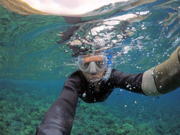 kihei snorkel rental
