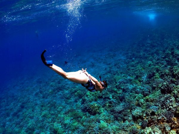 kihei snorkel gear