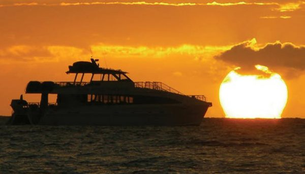 pacific-whale-foundation-dinner-cruise-6